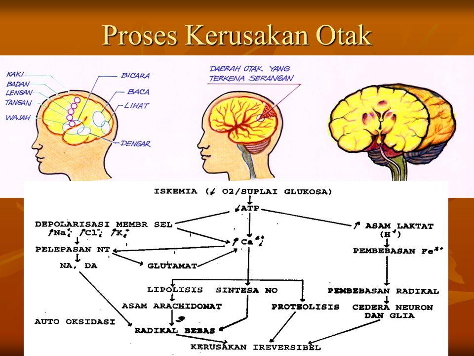 Proses Kerusakan Otak