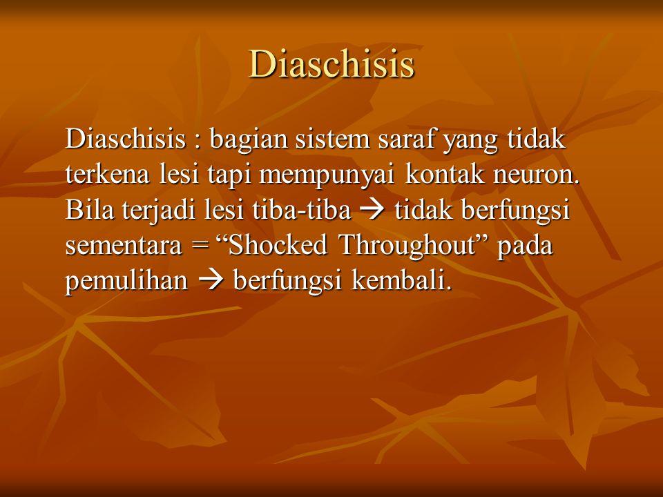 Diaschisis Diaschisis : bagian sistem saraf yang tidak terkena lesi tapi mempunyai kontak neuron. Bila terjadi lesi tiba-tiba  tidak berfungsi sement