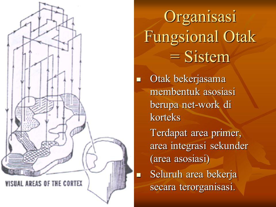 Organisasi Fungsional Otak = Sistem Otak bekerjasama membentuk asosiasi berupa net-work di korteks Otak bekerjasama membentuk asosiasi berupa net-work