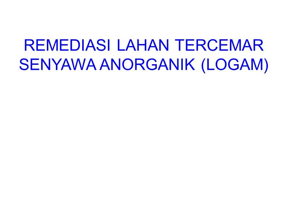 REMEDIASI LAHAN TERCEMAR SENYAWA ANORGANIK (LOGAM)