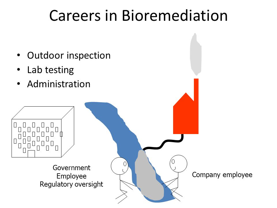 Careers in Bioremediation Outdoor inspection Lab testing Administration Company employee Government Employee Regulatory oversight