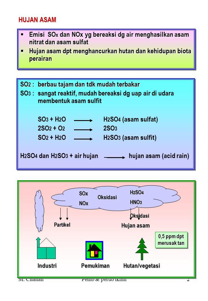 M. ChananPemb & perub iklim1 DAMPAK PEMBANGUNAN THD PERUBAHAN IKLIM POLUTAN : ¤ SO x (Sulfur Oksida) : SO 2 dan SO 3 ¤ NOx (Nitrogen monoksida) : NO d