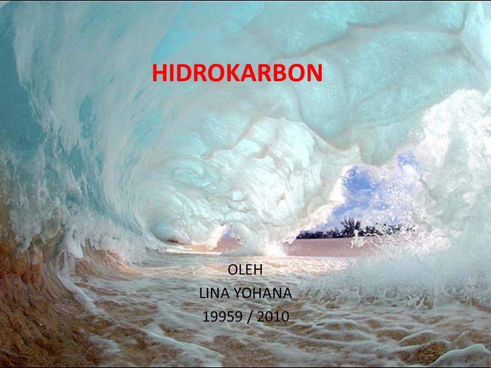 HIDROKARBON OLEH LINA YOHANA 19959 / 2010