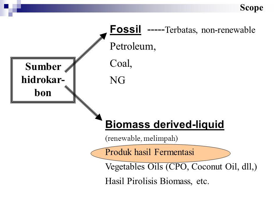 Fossil ----- Terbatas, non-renewable Petroleum, Coal, NG Biomass derived-liquid (renewable, melimpah) Produk hasil Fermentasi Vegetables Oils (CPO, Co