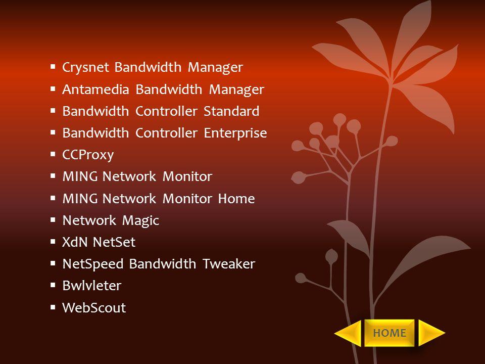  Crysnet Bandwidth Manager  Antamedia Bandwidth Manager  Bandwidth Controller Standard  Bandwidth Controller Enterprise  CCProxy  MING Network M