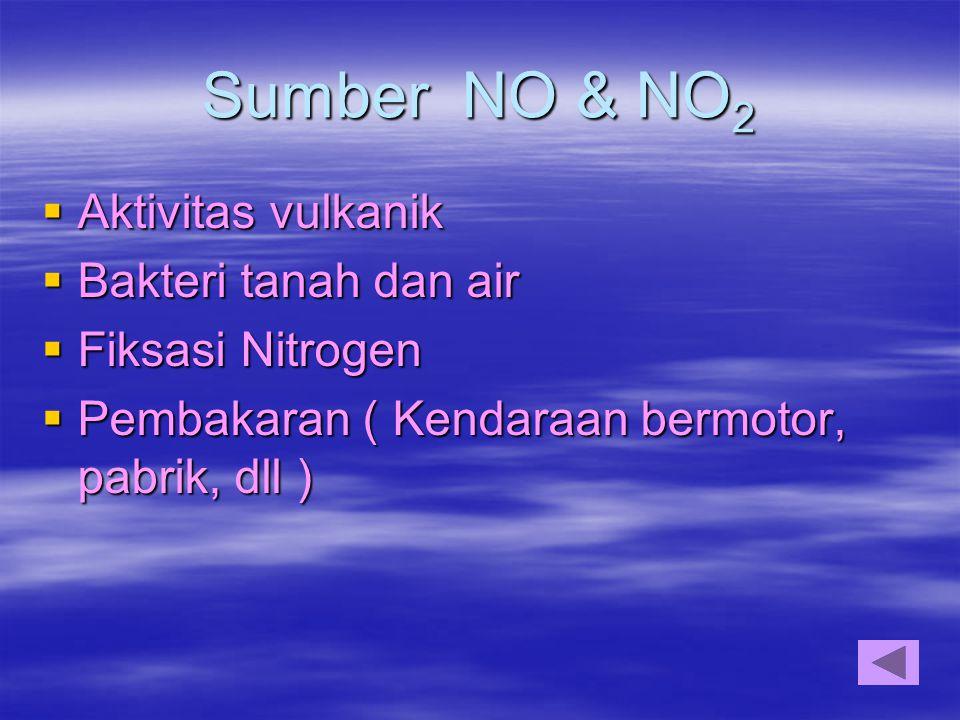 Sumber NO & NO 2  Aktivitas vulkanik  Bakteri tanah dan air  Fiksasi Nitrogen  Pembakaran ( Kendaraan bermotor, pabrik, dll )
