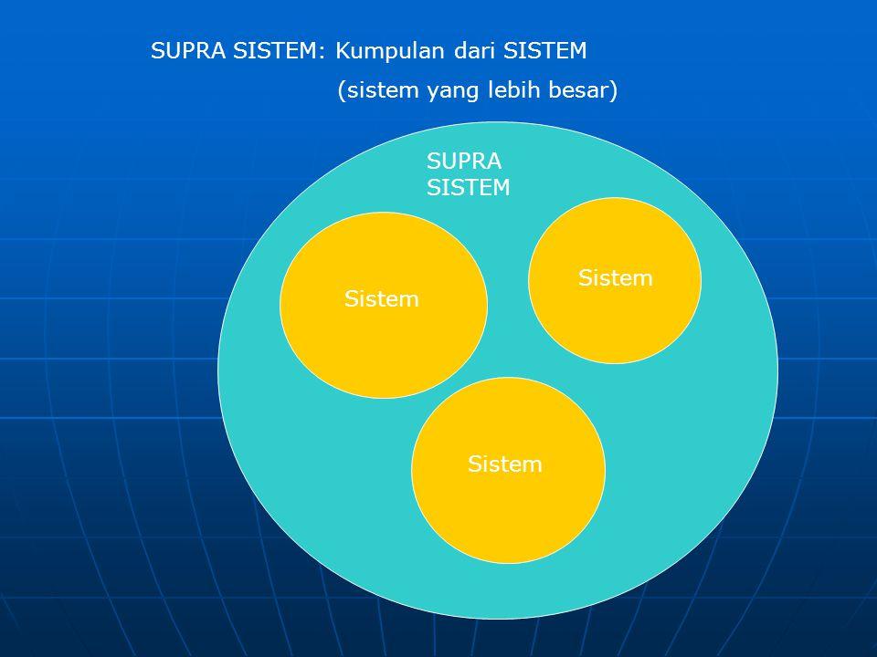 SUPRA SISTEM: Kumpulan dari SISTEM (sistem yang lebih besar) SUPRA SISTEM Sistem