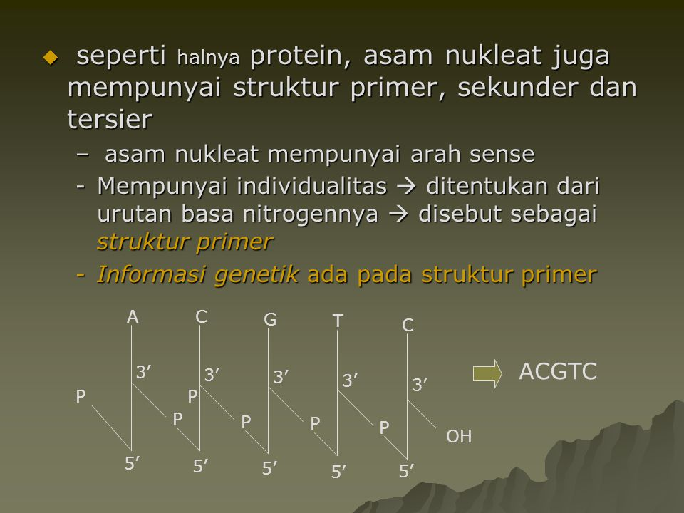 Struktur sekunder  Double helix –Watson n Crick  menjawab struktur 3D DNA dgn X-ray diffraction pattern : hsl penelitian Rosalind Franklin –Mampu menyimpulkan bahwa :  mempunyai struktur double helix  dengan 10 basa setiap putaran  putaran 360,  basa Nitrogen A-T, G – C  cekukan mayor and minor  double helix memutar ke kanan  self replication