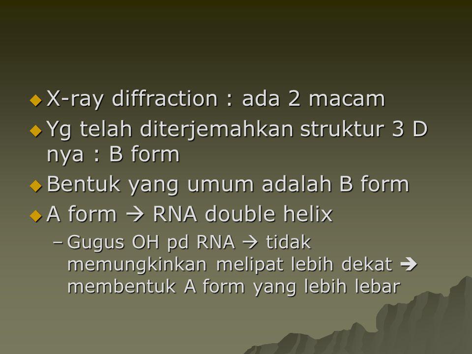  X-ray diffraction : ada 2 macam  Yg telah diterjemahkan struktur 3 D nya : B form  Bentuk yang umum adalah B form  A form  RNA double helix –Gug