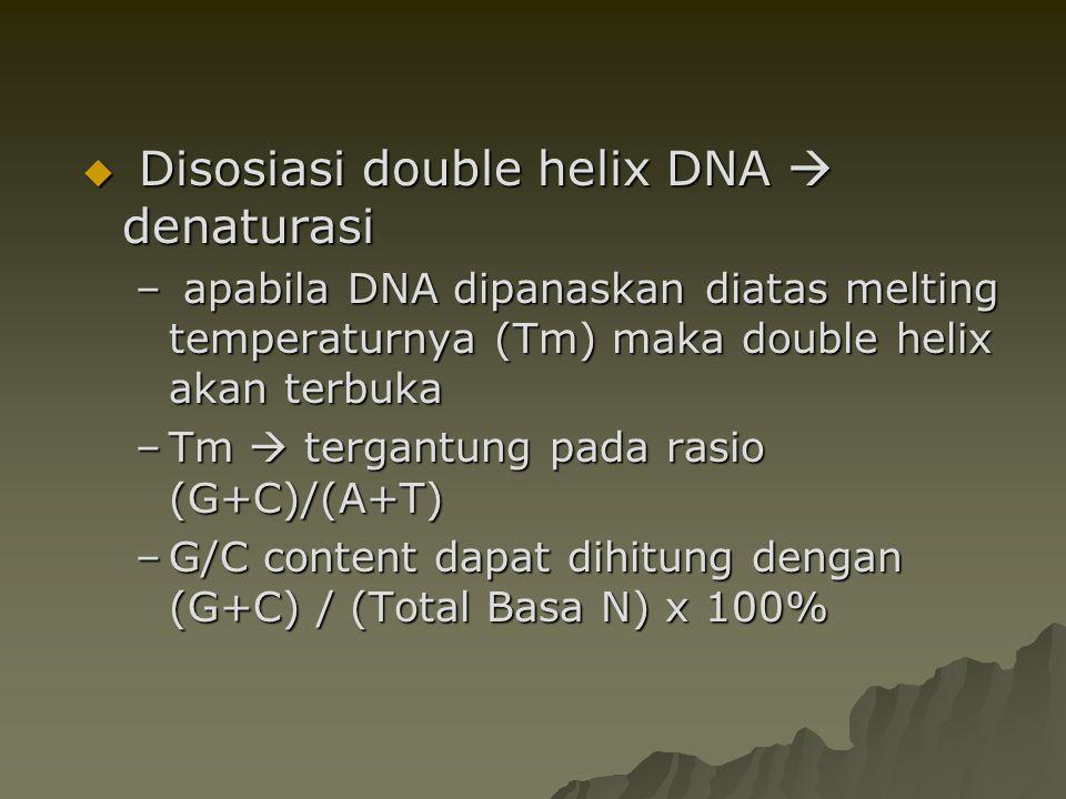  Disosiasi double helix DNA  denaturasi – apabila DNA dipanaskan diatas melting temperaturnya (Tm) maka double helix akan terbuka –Tm  tergantung p