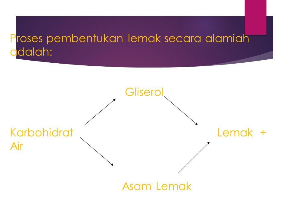 Proses pembentukan lemak secara alamiah adalah: Gliserol Karbohidrat Lemak + Air Asam Lemak