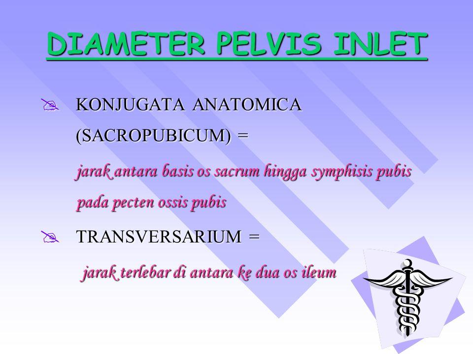 DIAMETER PELVIS INLET DIAMETER PELVIS INLET KKKKONJUGATA ANATOMICA (SACROPUBICUM) = jarak antara basis os sacrum hingga symphisis pubis pada pecten ossis pubis TTTTRANSVERSARIUM = jarak terlebar di antara ke dua os ileum