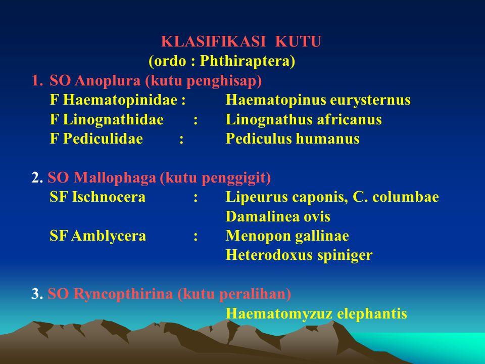 KLASIFIKASI KUTU (ordo : Phthiraptera) 1.SO Anoplura (kutu penghisap) F Haematopinidae :Haematopinus eurysternus F Linognathidae :Linognathus africanu