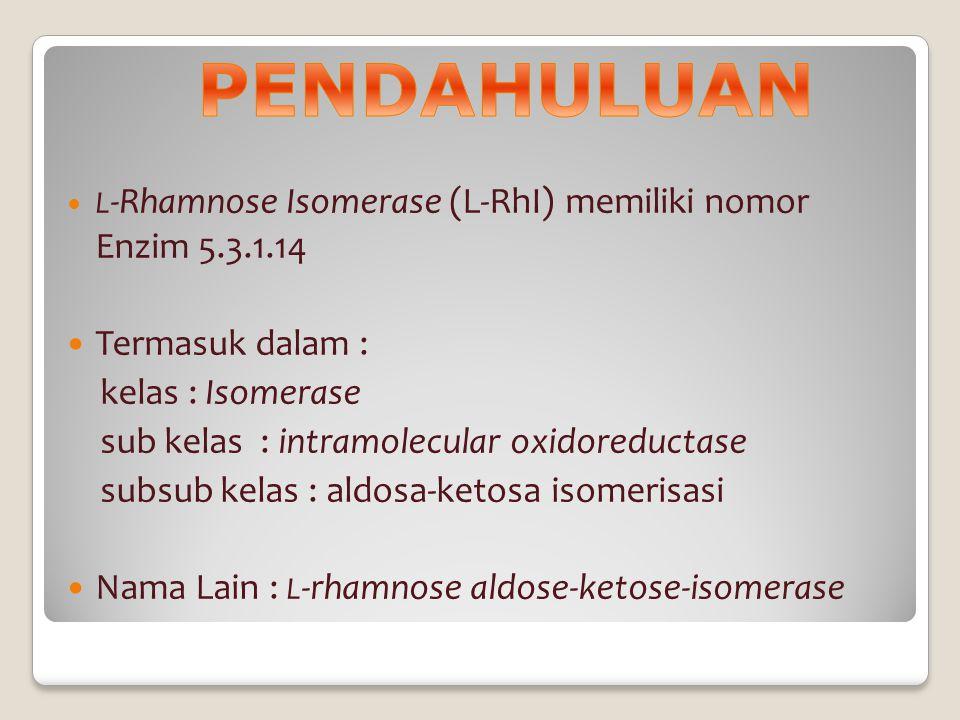 L -Rhamnose Isomerase (L-RhI) memiliki nomor Enzim 5.3.1.14 Termasuk dalam : kelas : Isomerase sub kelas : intramolecular oxidoreductase subsub kelas