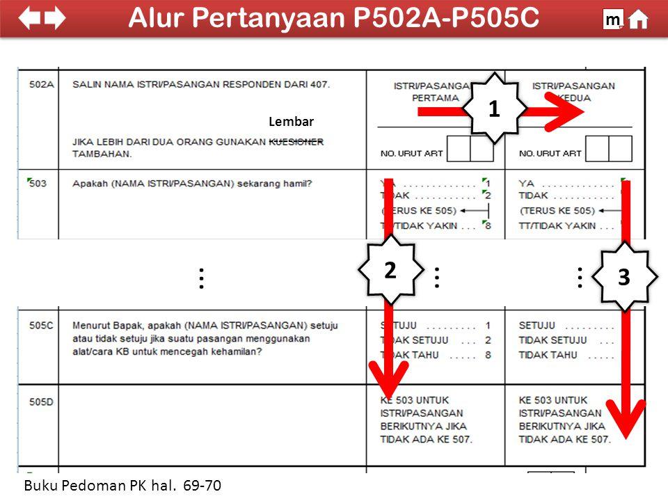 100% SDKI 2012 2 3... Alur Pertanyaan P502A-P505C m Buku Pedoman PK hal. 69-70 1 Lembar -----------