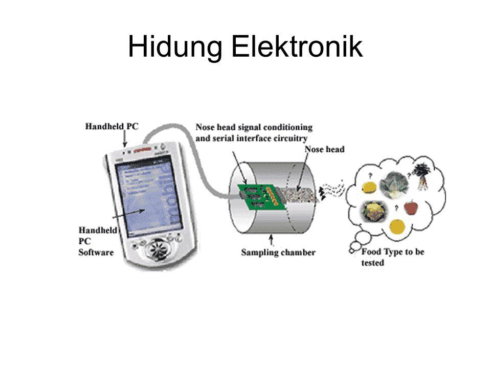 Hidung Elektronik