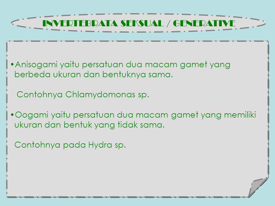 Anisogami yaitu persatuan dua macam gamet yang berbeda ukuran dan bentuknya sama.