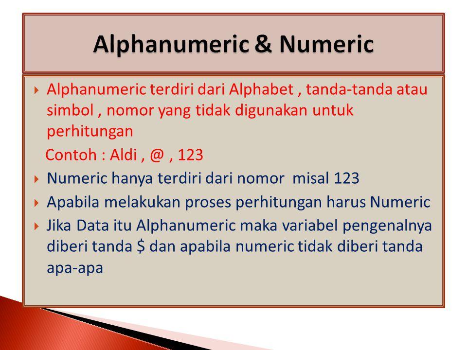  Alphanumeric terdiri dari Alphabet, tanda-tanda atau simbol, nomor yang tidak digunakan untuk perhitungan Contoh : Aldi, @, 123  Numeric hanya terdiri dari nomor misal 123  Apabila melakukan proses perhitungan harus Numeric  Jika Data itu Alphanumeric maka variabel pengenalnya diberi tanda $ dan apabila numeric tidak diberi tanda apa-apa
