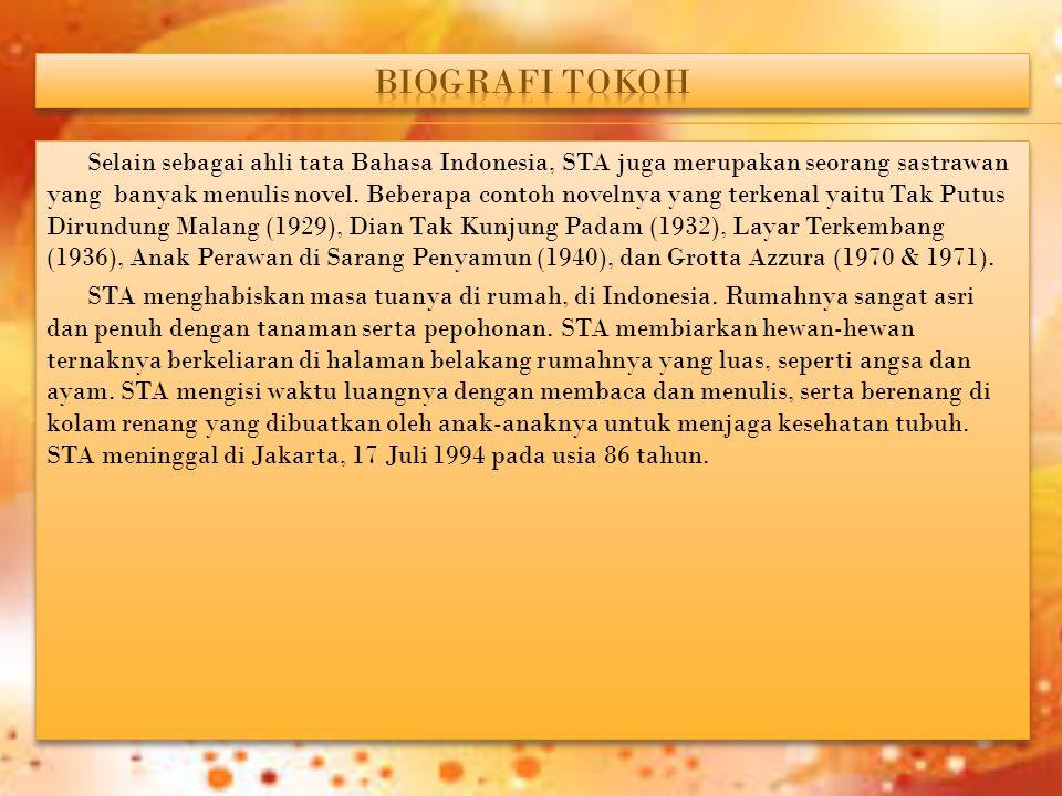Selain sebagai ahli tata Bahasa Indonesia, STA juga merupakan seorang sastrawan yang banyak menulis novel. Beberapa contoh novelnya yang terkenal yait