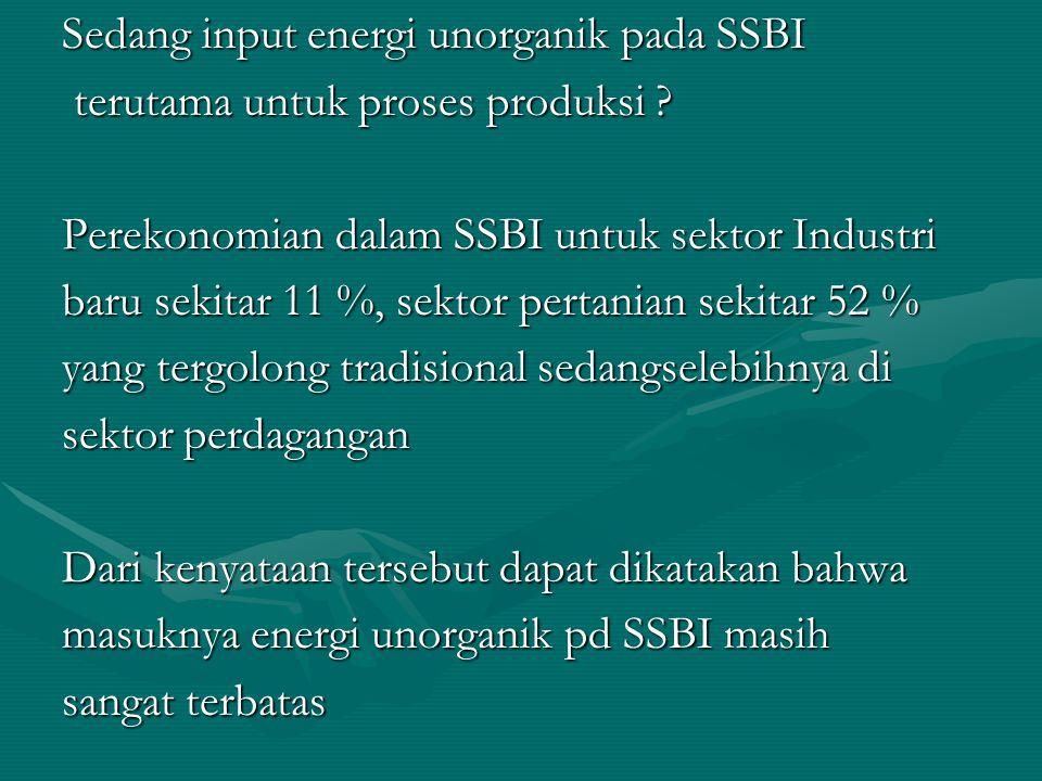 Input energi unorganik yang tergolong rendah bagi SSBI diantaranya disebabkan karena : 1.SSBI surplus tenaga kerja manusia 2.Kualifikasi penduduk dalam penguasaan tehnologi 3.Untuk eksplorasi energi unorganik masih sangat terbatas.