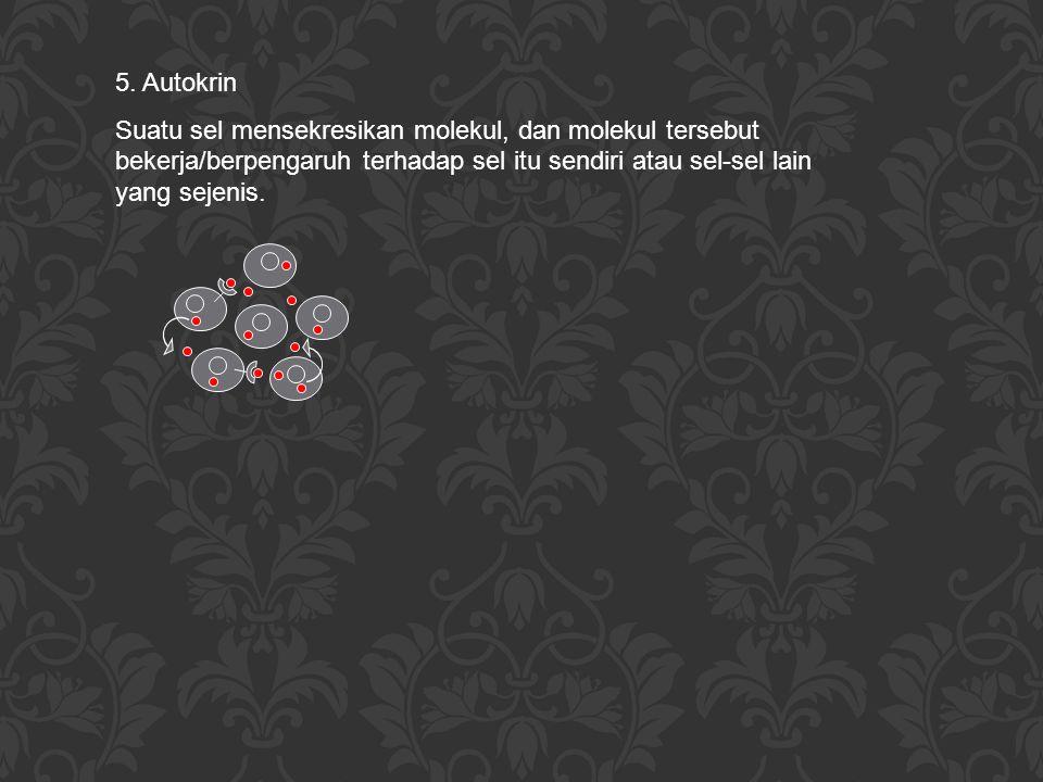 5. Autokrin Suatu sel mensekresikan molekul, dan molekul tersebut bekerja/berpengaruh terhadap sel itu sendiri atau sel-sel lain yang sejenis.