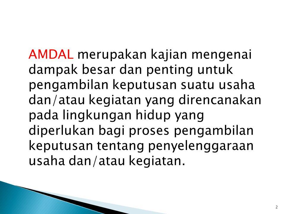 Prosedur AMDAL terdiri dari: 1.Proses penapisan (screening) wajib AMDAL 2.Proses pengumuman 3.Proses pelingkupan (scoping) 4.Penyusunan dan penilaian KA-ANDAL 5.Penyusunan dan penilaian ANDAL, RKL, dan RPL 6.Persetujuan Kelayakan Lingkungan 23