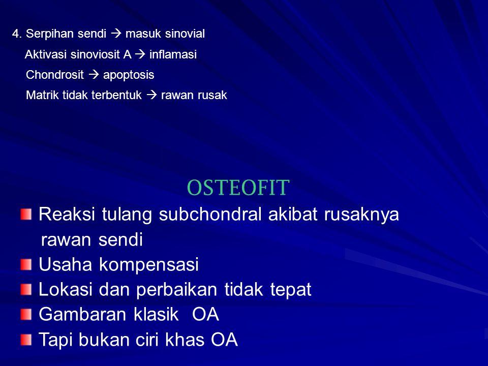 4. Serpihan sendi  masuk sinovial Aktivasi sinoviosit A  inflamasi Chondrosit  apoptosis Matrik tidak terbentuk  rawan rusak OSTEOFIT Reaksi tulan