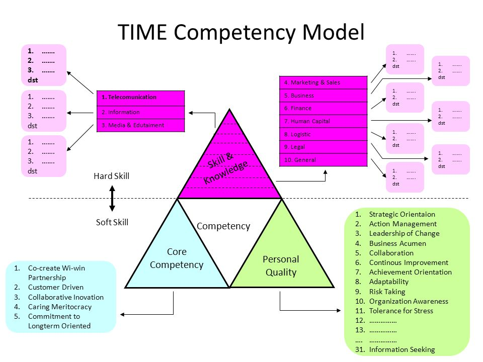 TIME Competency Model 1.Co-create Wi-win Partnership 2.Customer Driven 3.Collaborative Inovation 4.Caring Meritocracy 5.Commitment to Longterm Oriented Personal Quality Competency Core Competency 1.Strategic Orientaion 2.Action Management 3.Leadership of Change 4.Business Acumen 5.Collaboration 6.Continous Improvement 7.Achievement Orientation 8.Adaptability 9.Risk Taking 10.Organization Awareness 11.Tolerance for Stress 12.…………… 13.…………… ….…………… 31.Information Seeking Skill & Knowledge 4.