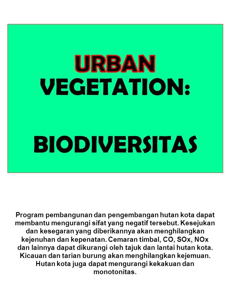 Program pembangunan dan pengembangan hutan kota dapat membantu mengurangi sifat yang negatif tersebut. Kesejukan dan kesegaran yang diberikannya akan