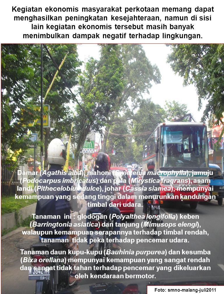 Terutama dilihat dari aspek tata ruang kota, kegiatan ekonomis masyarakat perkotaan cenderung mengurangi ruang terbuka hijau yang berfungsi menjaga keseimbangan ekosistem kota.