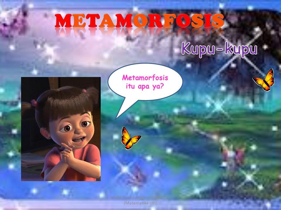 Metamorfosis itu apa ya? Rizdki Yunita Anggraini 0807617 (Matematika UPI)
