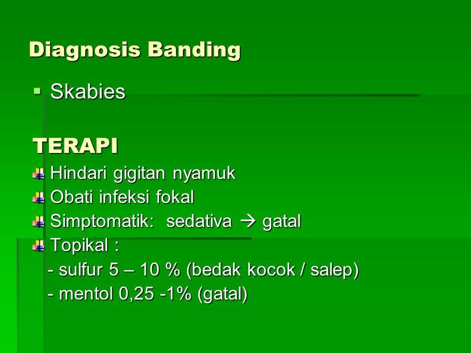 Diagnosis Banding  Skabies TERAPI Hindari gigitan nyamuk Obati infeksi fokal Simptomatik: sedativa  gatal Topikal : - sulfur 5 – 10 % (bedak kocok / salep) - sulfur 5 – 10 % (bedak kocok / salep) - mentol 0,25 -1% (gatal) - mentol 0,25 -1% (gatal)