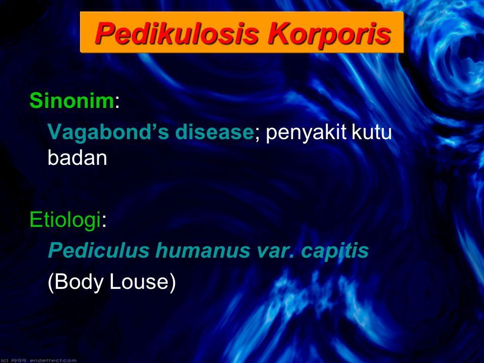 Sinonim: Vagabond's disease; penyakit kutu badan Etiologi: Pediculus humanus var.