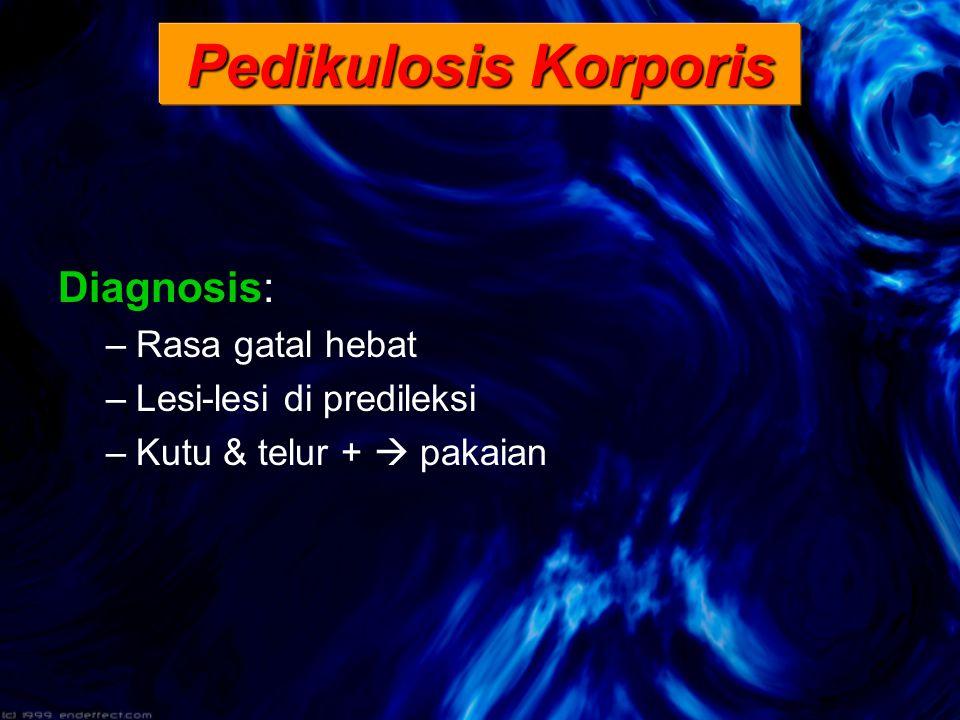 Pedikulosis Korporis Diagnosis: –Rasa gatal hebat –Lesi-lesi di predileksi –Kutu & telur +  pakaian