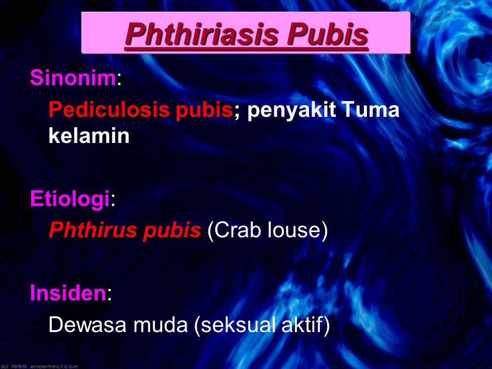 Sinonim: Pediculosis pubis; penyakit Tuma kelamin Etiologi: Phthirus pubis (Crab louse) Insiden: Dewasa muda (seksual aktif) Phthiriasis Pubis