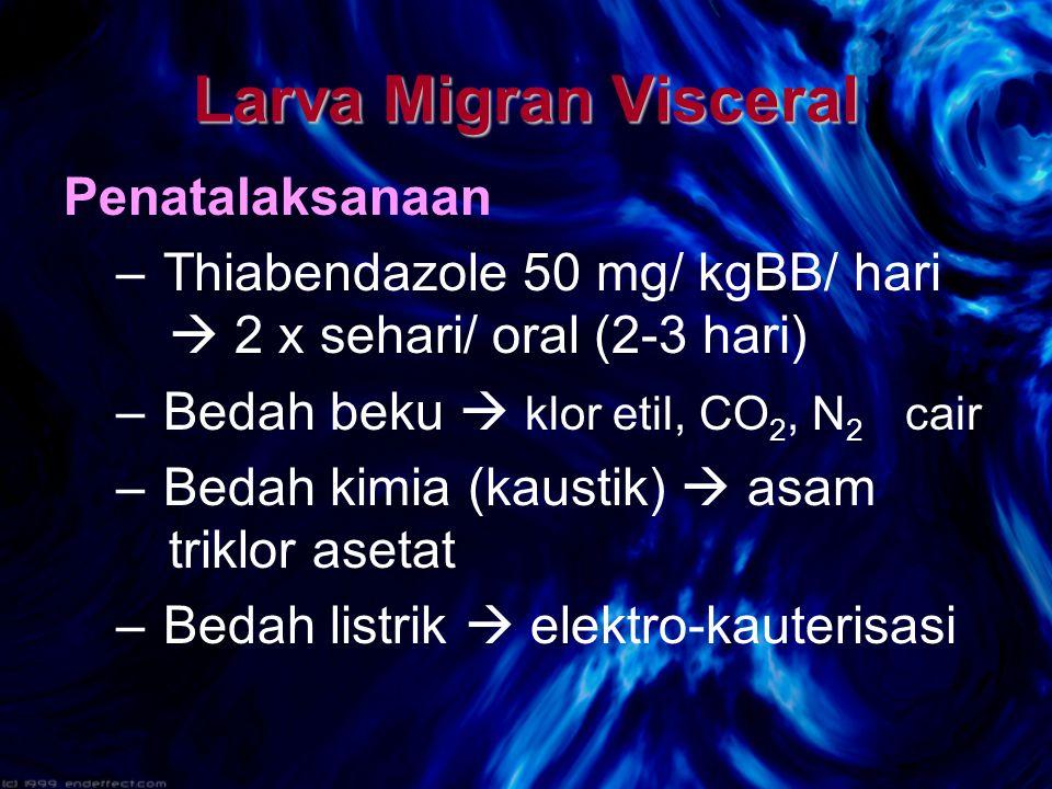 Larva Migran Visceral Penatalaksanaan – Thiabendazole 50 mg/ kgBB/ hari  2 x sehari/ oral (2-3 hari) – Bedah beku  klor etil, CO 2, N 2 cair – Bedah kimia (kaustik)  asam triklor asetat – Bedah listrik  elektro-kauterisasi