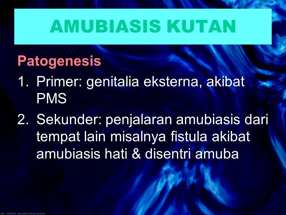 AMUBIASIS KUTAN Patogenesis 1.Primer: genitalia eksterna, akibat PMS 2.Sekunder: penjalaran amubiasis dari tempat lain misalnya fistula akibat amubiasis hati & disentri amuba