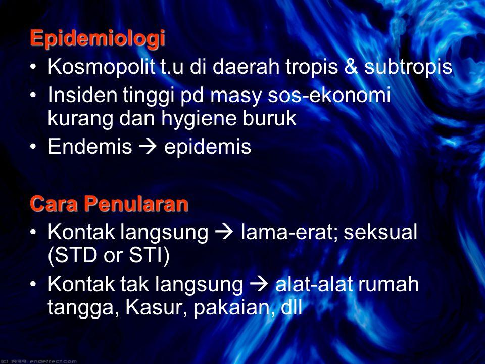 Simtomatologi Keluhan utama: - gatal hebat t.u malam hari (= Pruritus nokturna ) Predileksi: –Sela jari tangan & kaki, ekstensor ekstremitas –Lipat ketiak, sekitar pusar dan ikat pinggang –Daerah genital dan bokong –Pada bayi  seluruh tubuh !.