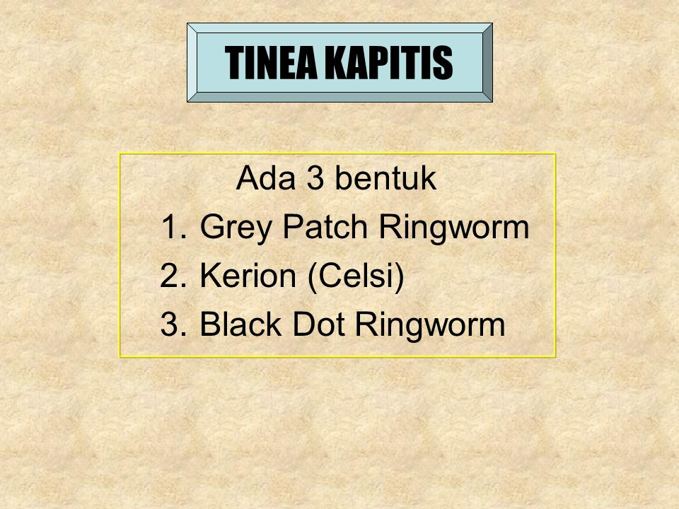 TINEA KAPITIS Ada 3 bentuk 1.Grey Patch Ringworm 2.Kerion (Celsi) 3.Black Dot Ringworm