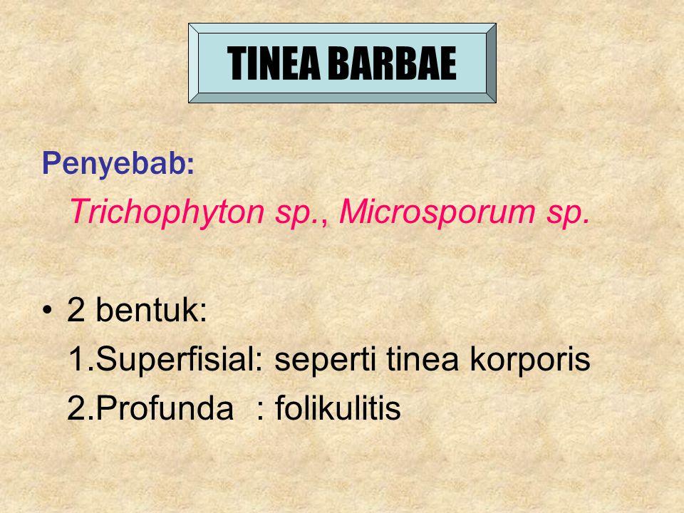 TINEA BARBAE Penyebab: Trichophyton sp., Microsporum sp. 2 bentuk: 1.Superfisial: seperti tinea korporis 2.Profunda : folikulitis
