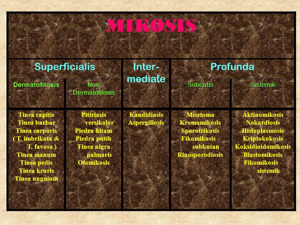 MIKOSIS SuperficialisInter- mediate Profunda Dermatofitosis Non DermatofitosisSubcutisSistemik Tinea capitis Tinea barbae Tinea corporis ( T. imbrikat