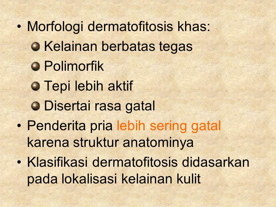 Morfologi dermatofitosis khas: Kelainan berbatas tegas Polimorfik Tepi lebih aktif Disertai rasa gatal Penderita pria lebih sering gatal karena strukt