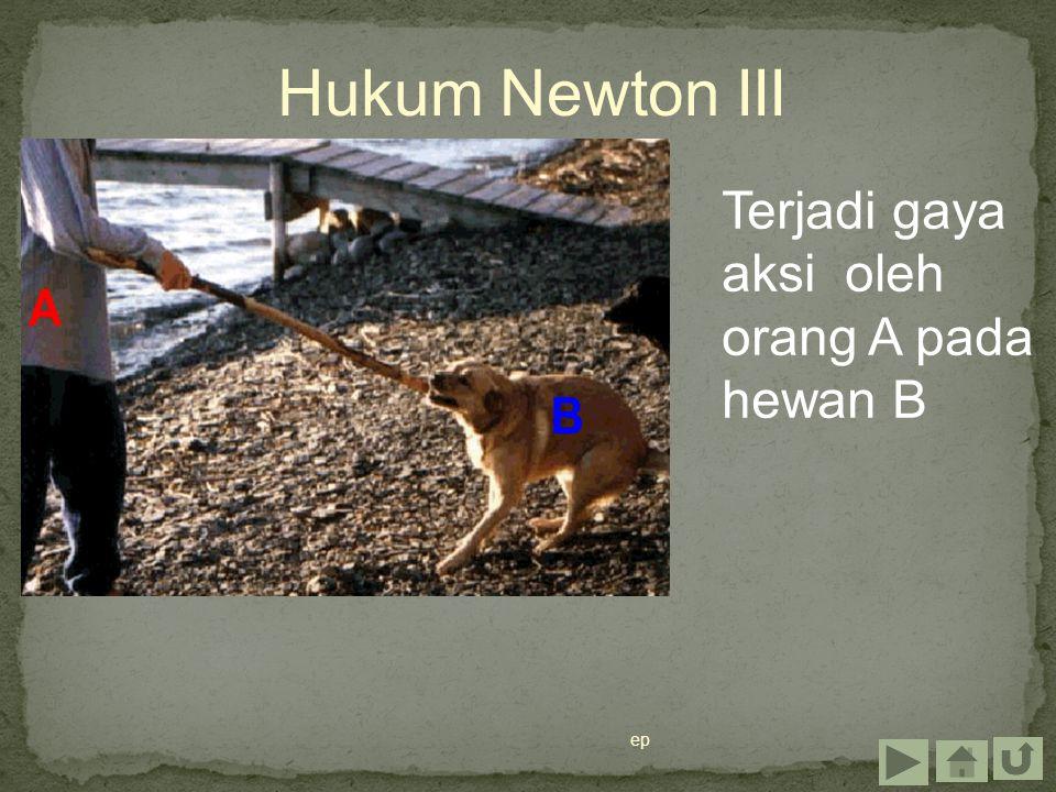 Hukum Newton III Terjadi gaya aksi oleh orang A pada hewan B