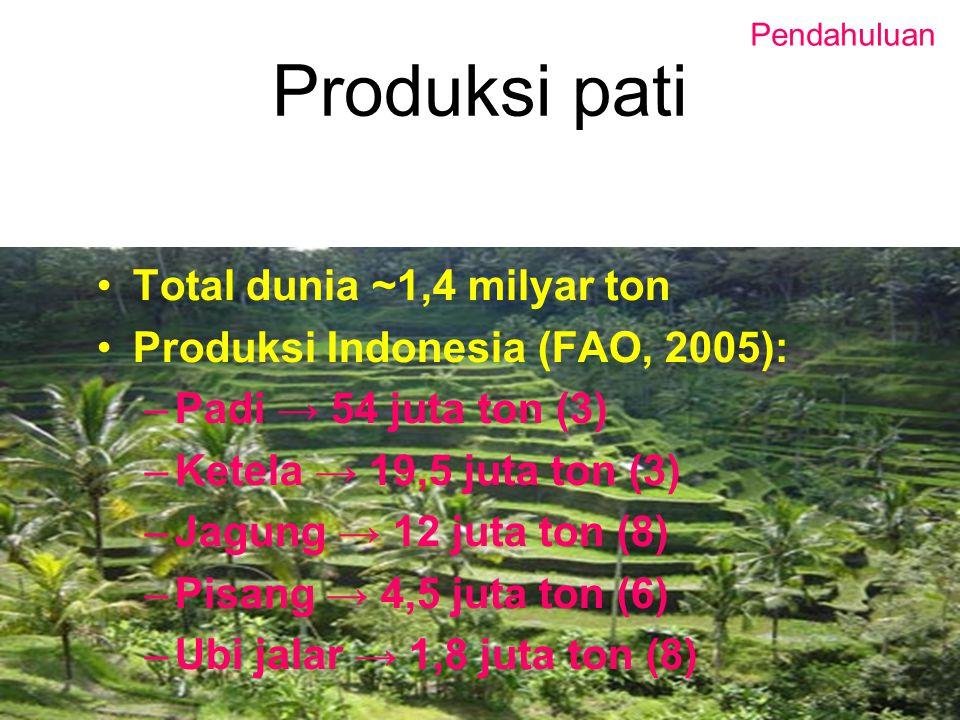 Produksi pati Total dunia ~1,4 milyar ton Produksi Indonesia (FAO, 2005): –Padi → 54 juta ton (3) –Ketela → 19,5 juta ton (3) –Jagung → 12 juta ton (8