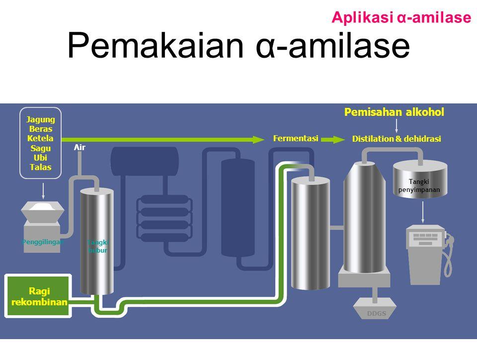 Pemakaian α-amilase Aplikasi α-amilase Penggilingan Tangki bubur Tangki penyimpanan DDGS Ragi rekombinan Air Pemisahan alkohol Fermentasi Distilation