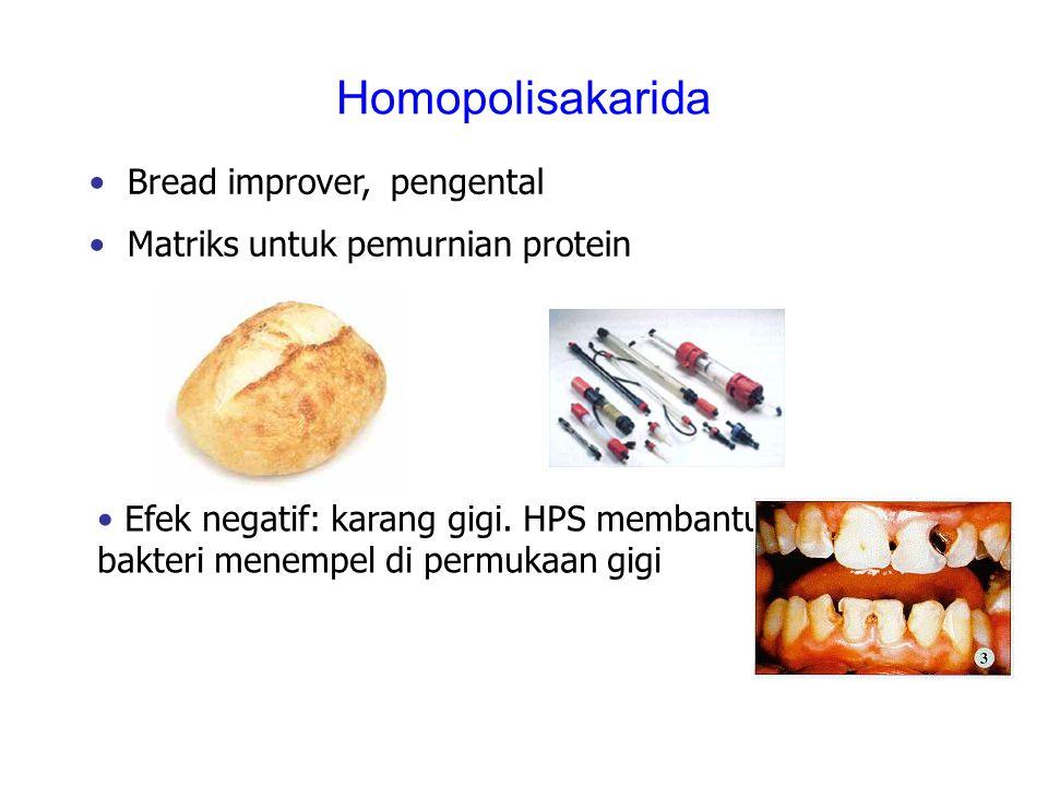 Homopolisakarida Bread improver, pengental Matriks untuk pemurnian protein Efek negatif: karang gigi. HPS membantu bakteri menempel di permukaan gigi