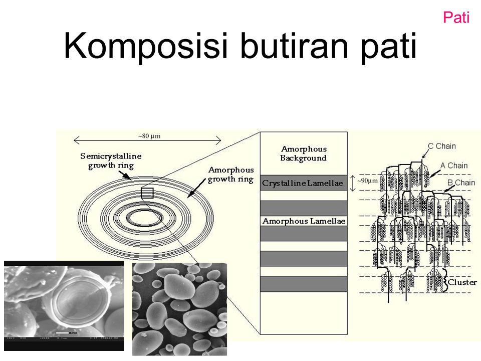 Eksoopolisakarida (EPS) Polimer gula 'sticky' yang terikat pada bagian luar sel atau yang dilepas keluar oleh bakteri dan juga ragi, jamur, mikroalga.