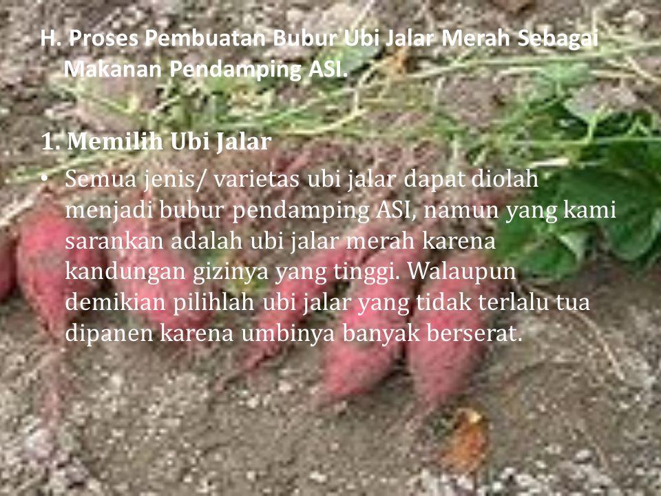 H. Proses Pembuatan Bubur Ubi Jalar Merah Sebagai Makanan Pendamping ASI. 1. Memilih Ubi Jalar Semua jenis/ varietas ubi jalar dapat diolah menjadi bu