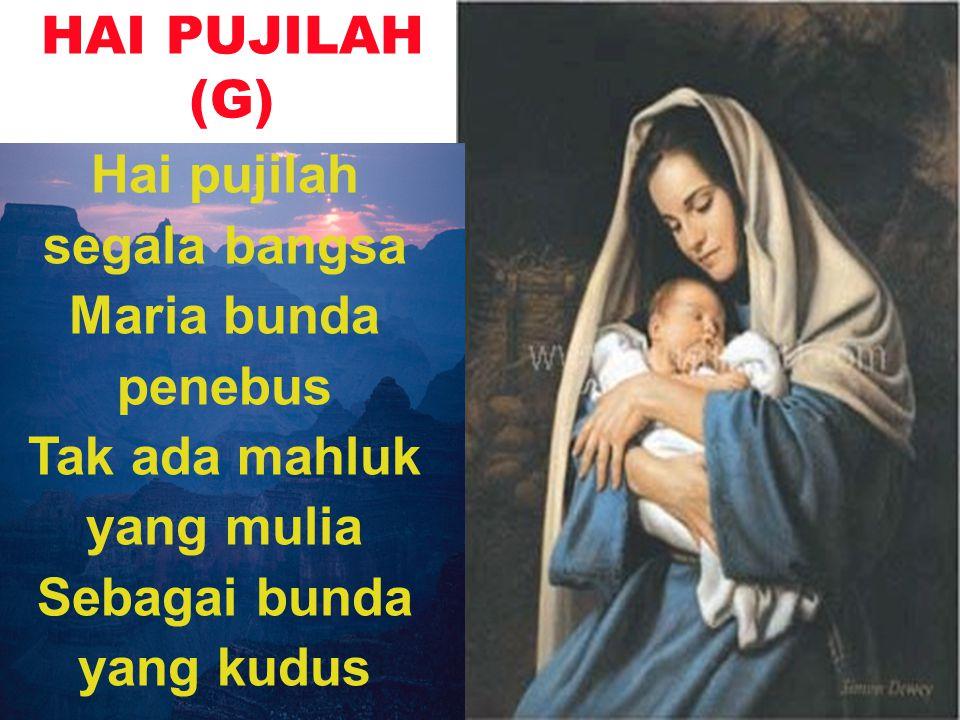 HAI PUJILAH (G) Hai pujilah segala bangsa Maria bunda penebus Tak ada mahluk yang mulia Sebagai bunda yang kudus