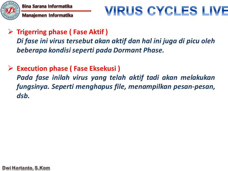  Trigerring phase ( Fase Aktif ) Di fase ini virus tersebut akan aktif dan hal ini juga di picu oleh beberapa kondisi seperti pada Dormant Phase.